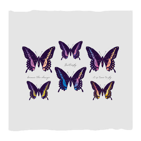 Butterfly abstract illustration