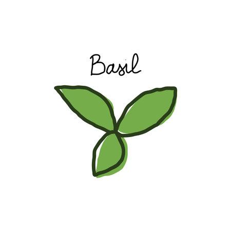 Basil leaves hand drawn cartoon doodle vector illustration Иллюстрация