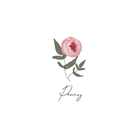 delicate peony branch flower cute hand drawn textures