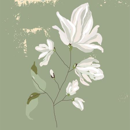 Magnolia flower tree branch hand drawn illustration Иллюстрация