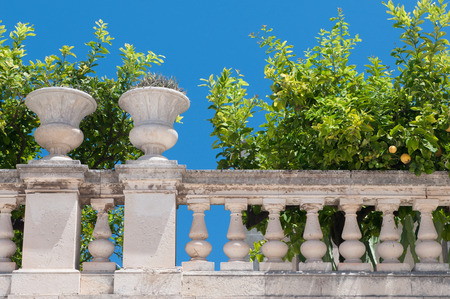 episcopal: Partial view of the gardens laying by the episcopal palace in Siracusa