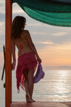 pareo: Back view of a girl with swimsuit and pareo standing on a wooden quay while looking at the sea Stock Photo