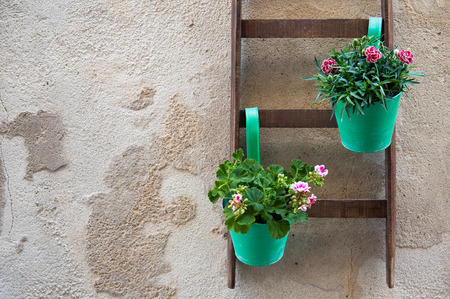 characteristic: View of a characteristic ornamental wooden ladder with some flowered vases in one of the alleys in Ortigia, the old part of Syracuse