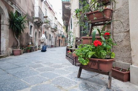syracuse: View of one characteristic street in Ortigia, the old part of Syracuse, with an ornamental wooden ladder and flowered vases