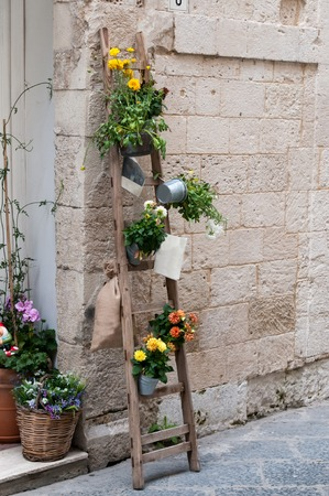 характеристика: View of a characteristic ornamental wooden ladder with some flowered vases in one of the alleys in Ortigia, the old part of Syracuse