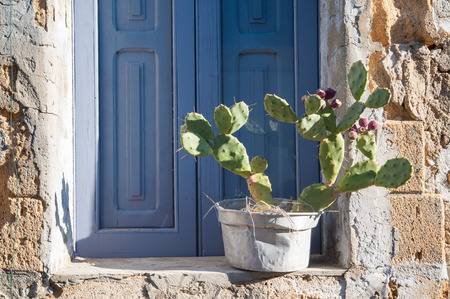 Rustic metal vase with a cactus plant on a window sill of a typical stone house in the small fishing village Marzamemi, East Sicily Stok Fotoğraf - 39953256