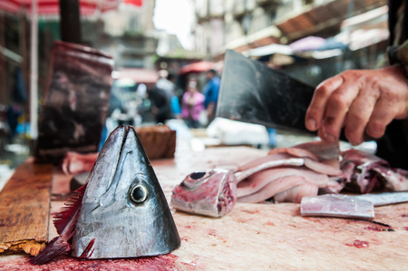 animal blood: Cut head of a tuna fish on the work table of a fish seller cutting it into slices fish market Catania Sicily