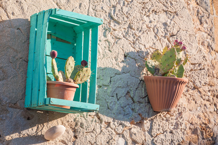 folkloristic: View of an ornamental wooden fruit box hung in the external wall of a stone house as a vase holder for a cactus plant