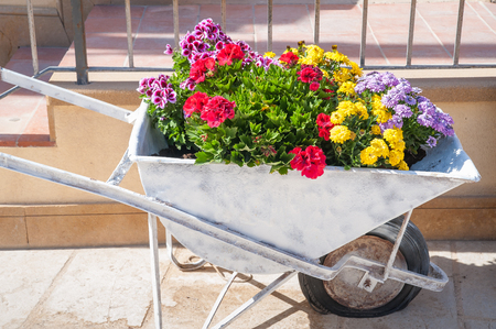 push cart: Old Iron creativily push cart used as a vase for flowers along the streets of Marzamemi, Sicily