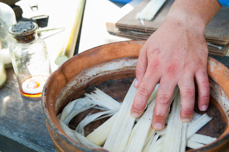 obtained: Hands of a papyrus artisan in Syracuse dunking thin strips obtained from the stem of the plant into the water mixed with antioxidant