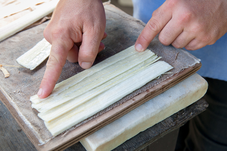 Artisan of the papyrus paper in Syracuse superimposing perpendicularly long thin strips obtained from the stem of the plant
