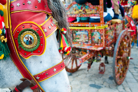 folkloristic: Close up view of the horse of a sicilian cart and its ornamental harness
