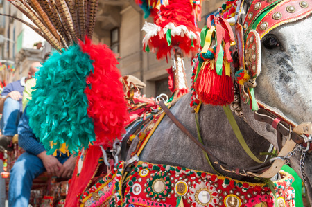 folkloristic: Typical ornaments on the horse a of sicilian cart made of colored harness