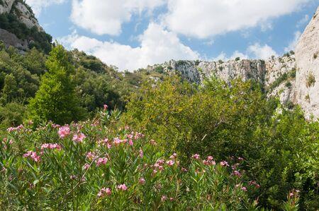 sicily: Cavagrande valley, Sicily