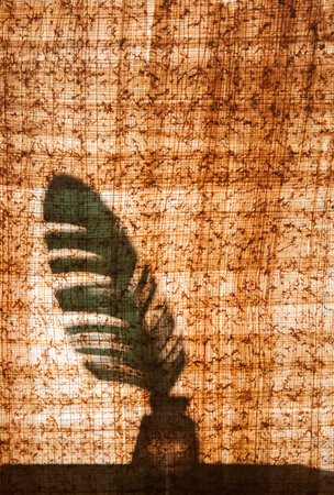 pluma de escribir antigua: Papyrus sheet with its typical structure and texture and a quill pen behind it