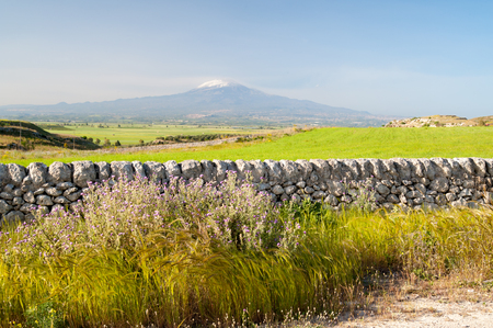 dry stone: View of a typical dry stone wall a of a field of wheat in the hills near Ragusa, Sicily, and mount Etna in the distance