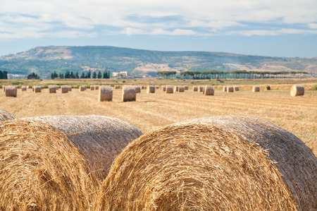 Straw bales in the plain of Catania, Sicily Stock Photo