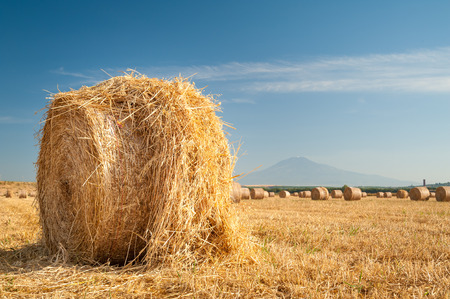 Straw bales in the plain of Catania, Sicily, and Mount Etna in the distance