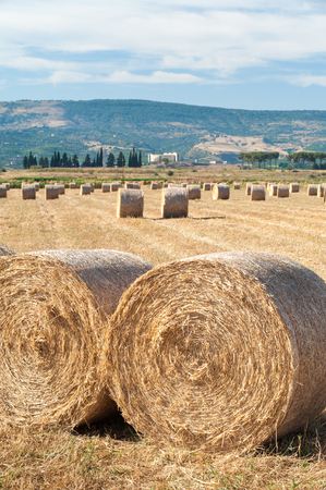 prairie: Straw bales in the plain of Catania, Sicily Stock Photo