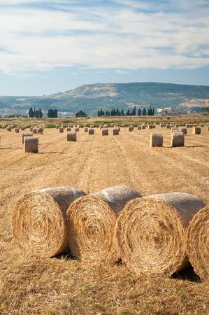 catania: Straw bales in the plain of Catania, Sicily Stock Photo