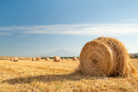 catania: Straw bales in the plain of Catania, Sicily, and Mount Etna in the distance