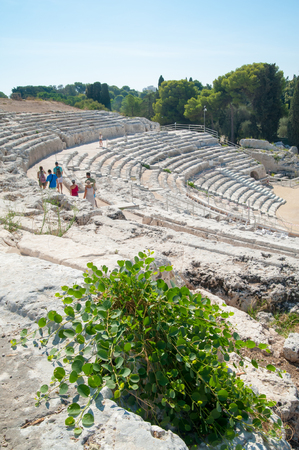 The famous greek theater of Syracuse, Sicily, with a flowered caper plant in the foreground