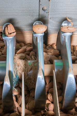 shelling: Almonds during the process of shell cracking in a modern factory Stock Photo