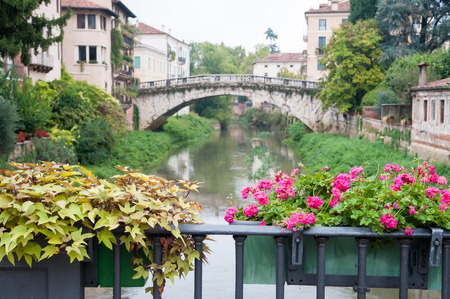 Flowered vase of geraniums in the balcony of San Paolo bridge and the old stone San Michele bridge in the background, Vicenza, Italy