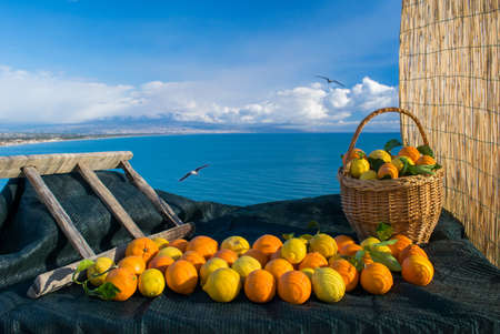 Oranges, lemons, wicker basket and wooden ladder with blue sea and Mount Etna in the background