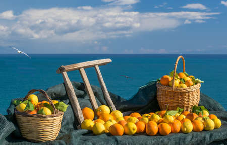 Oranges, lemons, wicker basket and wooden ladder with blue sea in the background