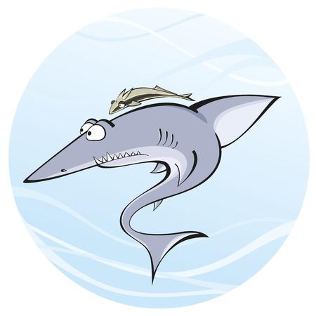 Shark that has stuck to the Remora Ilustracja