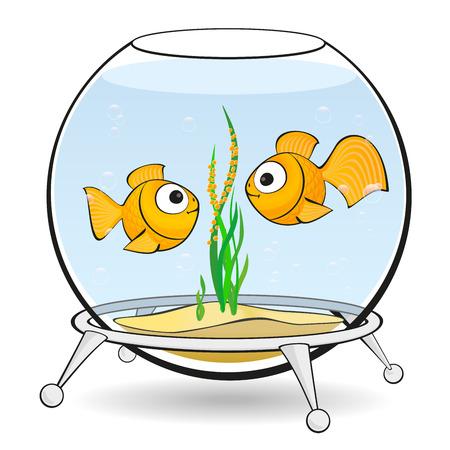 spawn: couple goldfish in an aquarium looking at caviar Illustration
