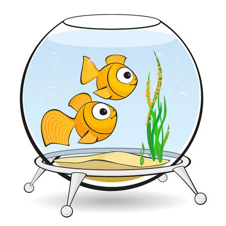 gills: couple goldfish in an aquarium looking at caviar Illustration