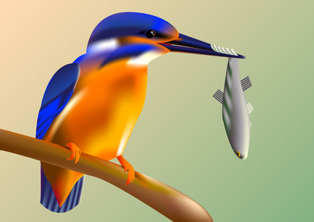 Bird kingfisher on a branch with fish in its beak, vector pattern with a mesh gradient Vectores