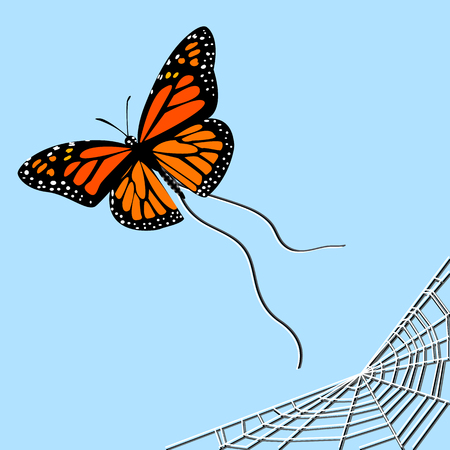 a butterfly that escaped from the web, a thematic drawing