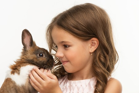 pets: Close up photo of beautiful little girl looking at cute brown bunny, isolated on white background Stock Photo