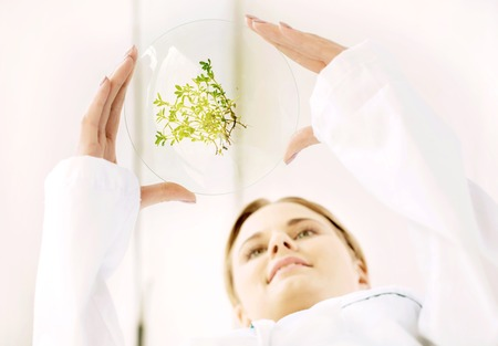 Bottom view beautiful young biologist experimenting in laboratory. Woman studying green sprouts Stock Photo