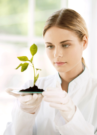 Beautiful young biologist experimenting in laboratory. Woman studying green sprout