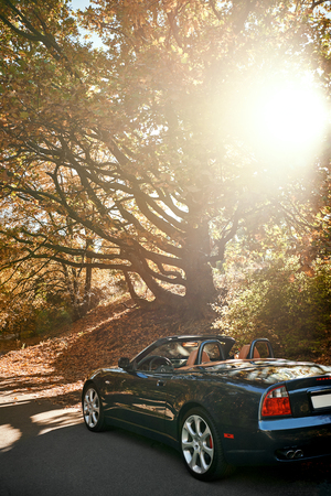 A black roofless car driving fast on the countryside asphalt road against morning sky with a beautiful sunrise. Autumn season, falling leaves Stock Photo