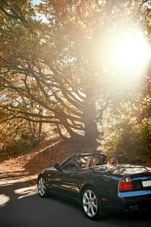 Czarny samochód bez dachu jedzie szybko po wiejskiej drodze asfaltowej przed porannym niebem z pięknym wschodem słońca. Sezon jesienny, opadające liście