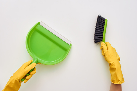 Clean your house. Brush and scoop isolated