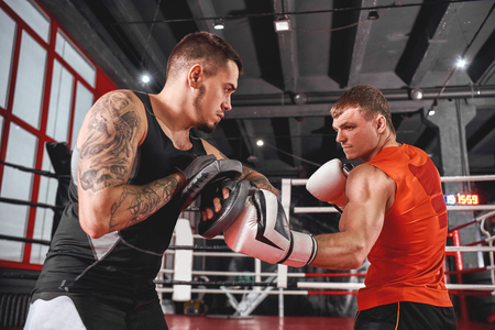 Heavy hook to the body. Handsome sportsman in sports clothing training on boxing paws with partner in boxing gym