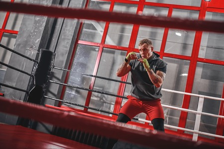 Training to be the best. Muscular tattooed boxer in sports clothing punching on red boxing ring while exercising in the gym Stock Photo