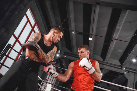 Heavy uppercut. Handsome sportsman in sports clothing training on boxing paws with partner in boxing gym