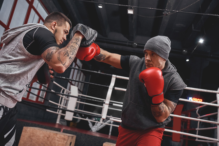 Right hook to the paw. Focused athlete in boxing gloves training on boxing paws while standing in boxing gym Stock Photo
