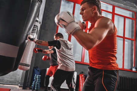 Training they boxing skills. Young athletes in sports clothing training hard on heavy punch bags before big fight in boxing gym