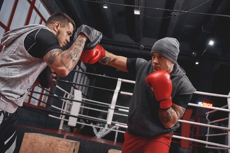 Right hook to the paw. Focused athlete in boxing gloves training on boxing paws while standing in boxing gym