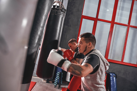 Working out. Young tattooed athletes in sports clothing training hard on heavy punch bags before big fight in boxing gym Stock Photo