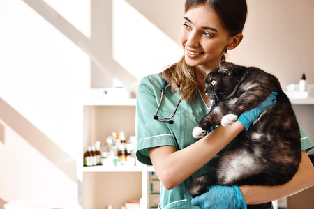 I love each of my patients! Smiling female vet holding a big black fluffy cat in her hands, smiling and looking at camera while standing in veterinary clinic