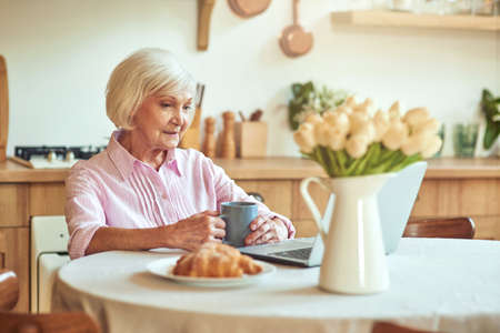 Smiling elder woman sitting at the table and using laptop